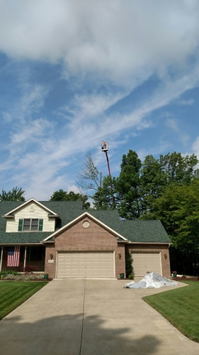 Tree Lift in Mansfield OH